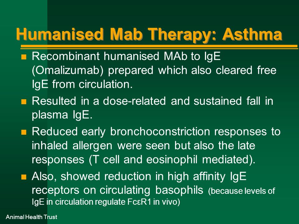 Humanised Mab Therapy: Asthma