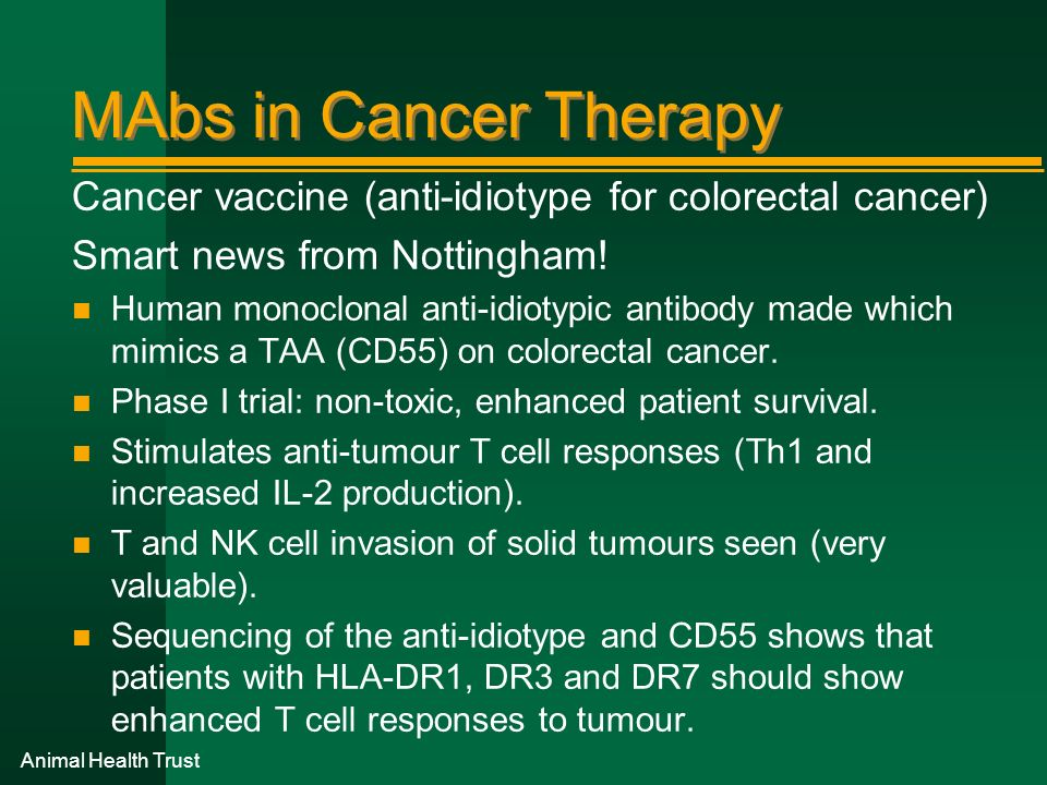 MAbs in Cancer Therapy Cancer vaccine (anti-idiotype for colorectal cancer) Smart news from Nottingham!