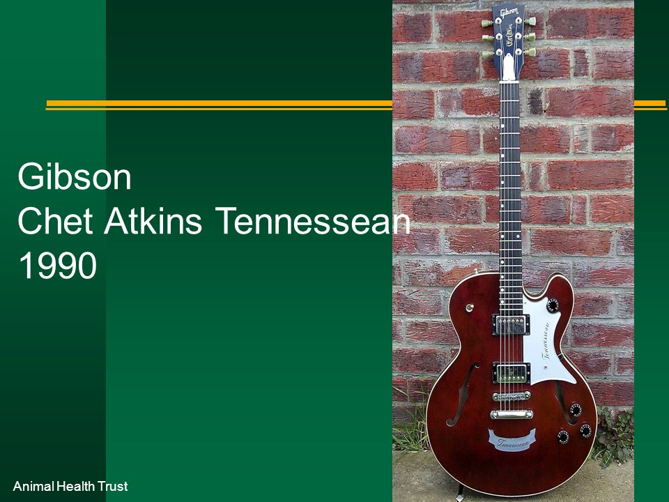 Gibson Chet Atkins Tennessean 1990
