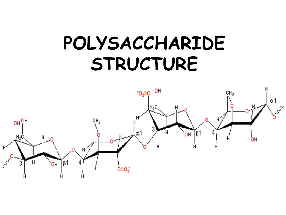 POLYSACCHARIDE STRUCTURE