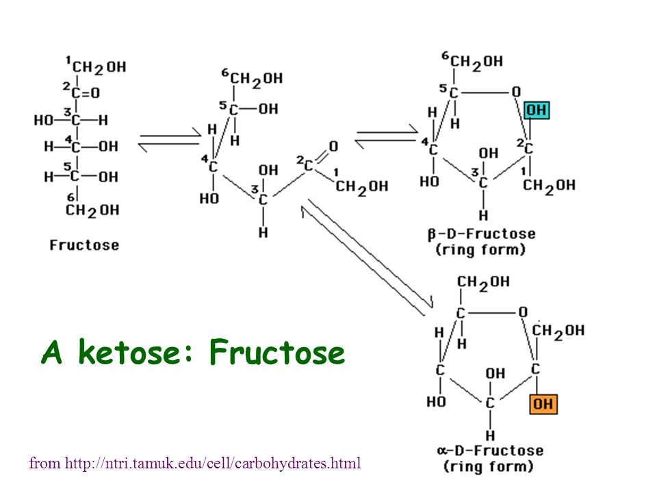 A ketose: Fructose from http://ntri.tamuk.edu/cell/carbohydrates.html