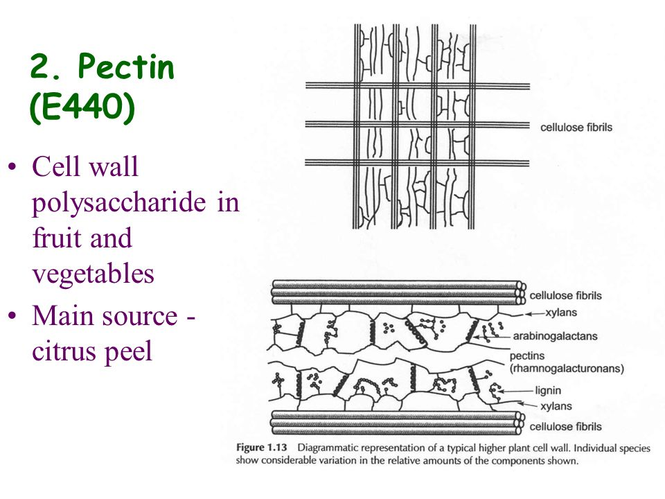 2. Pectin (E440) Cell wall polysaccharide in fruit and vegetables