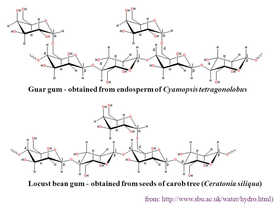 Guar gum - obtained from endosperm of Cyamopsis tetragonolobus