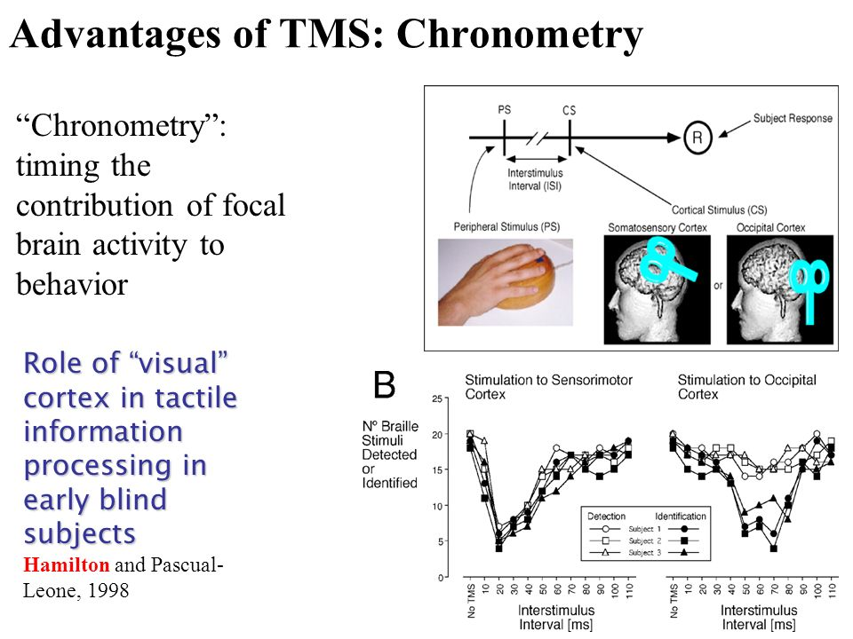 Advantages of TMS: Chronometry