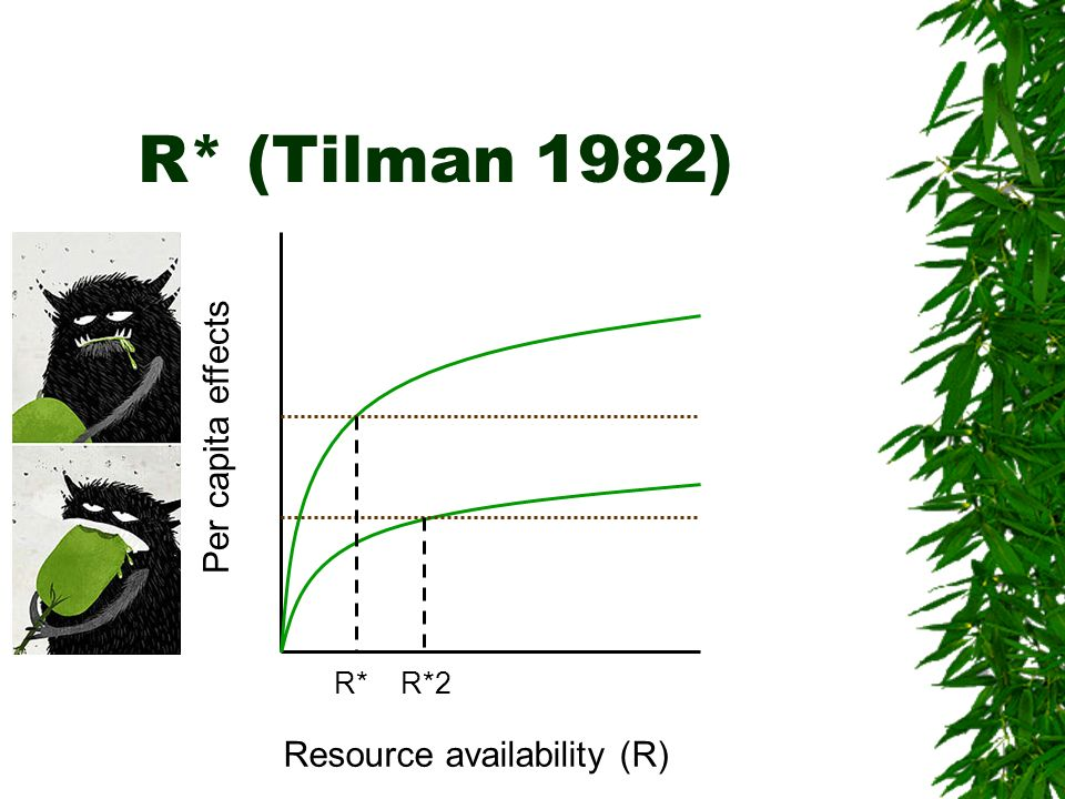 R* (Tilman 1982) Per capita effects R* R*2 Resource availability (R)