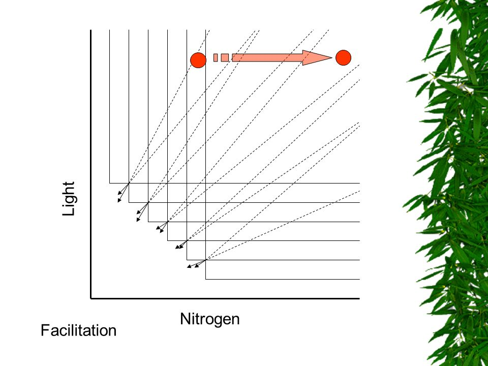 Nitrogen Light Facilitation