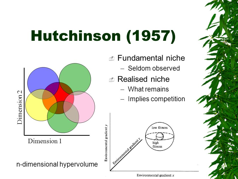 Hutchinson (1957) Fundamental niche Realised niche Seldom observed