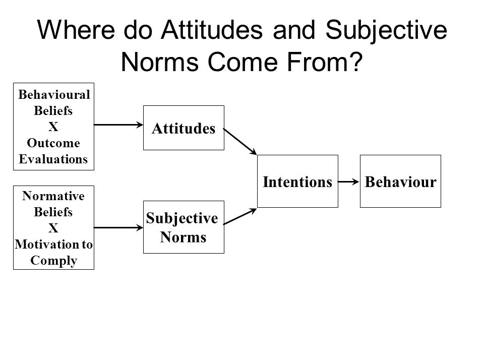 Where do Attitudes and Subjective Norms Come From