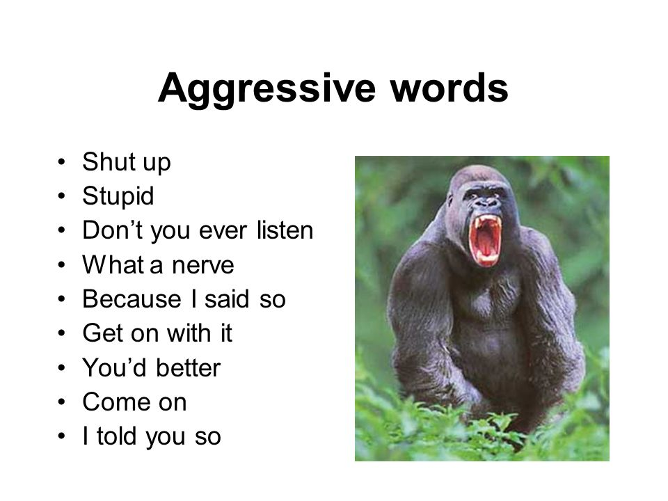 Aggressive words Shut up Stupid Don't you ever listen What a nerve