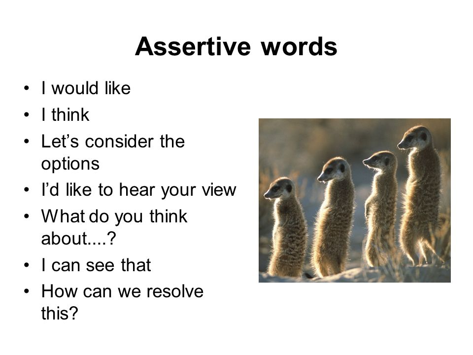 Assertive words I would like I think Let's consider the options