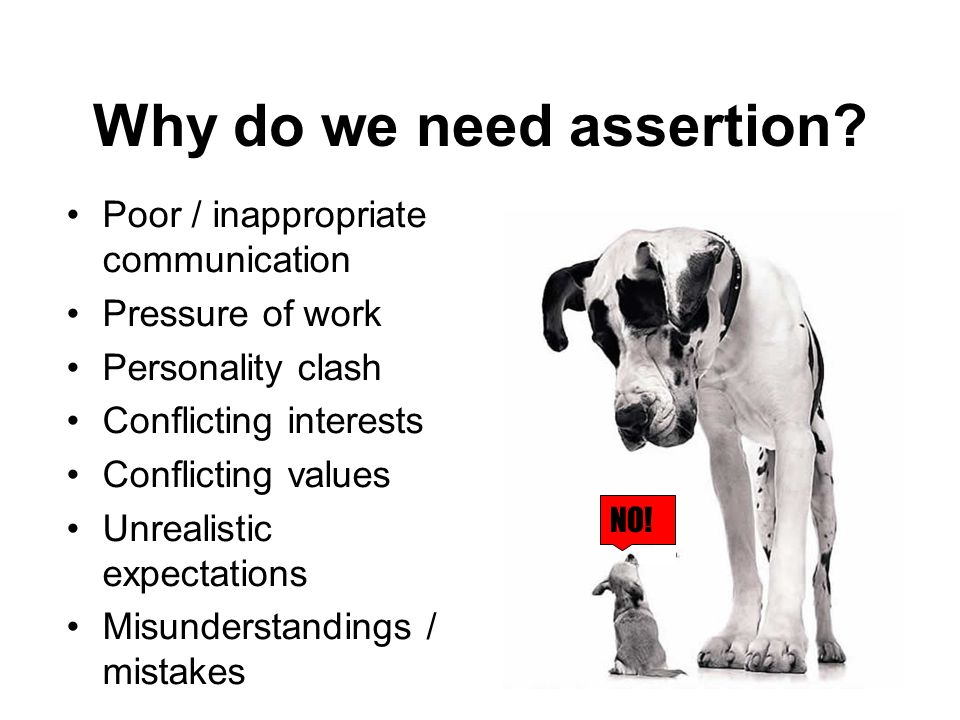 Why do we need assertion