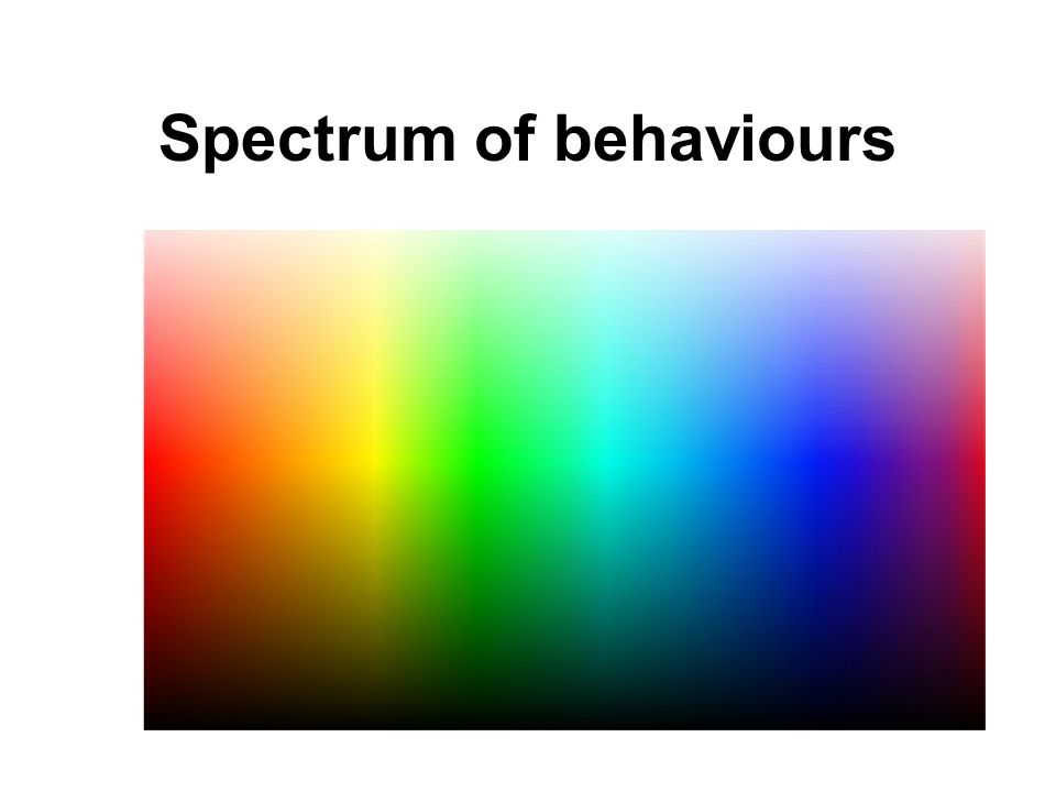 Spectrum of behaviours
