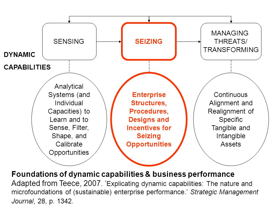 Foundations of dynamic capabilities & business performance