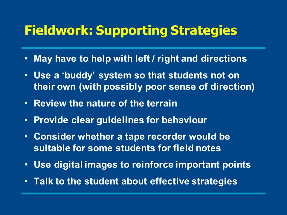 Fieldwork: Supporting Strategies