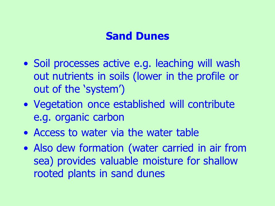 Sand Dunes Soil processes active e.g. leaching will wash out nutrients in soils (lower in the profile or out of the 'system')