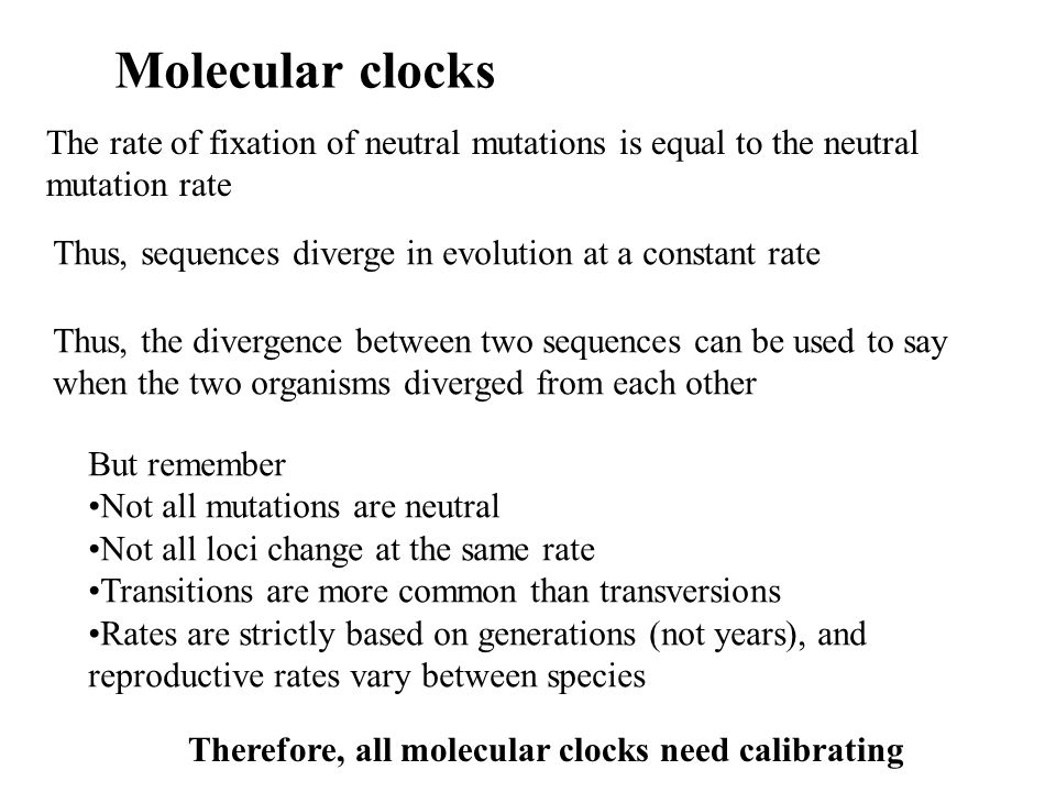 Molecular clocks The rate of fixation of neutral mutations is equal to the neutral mutation rate.