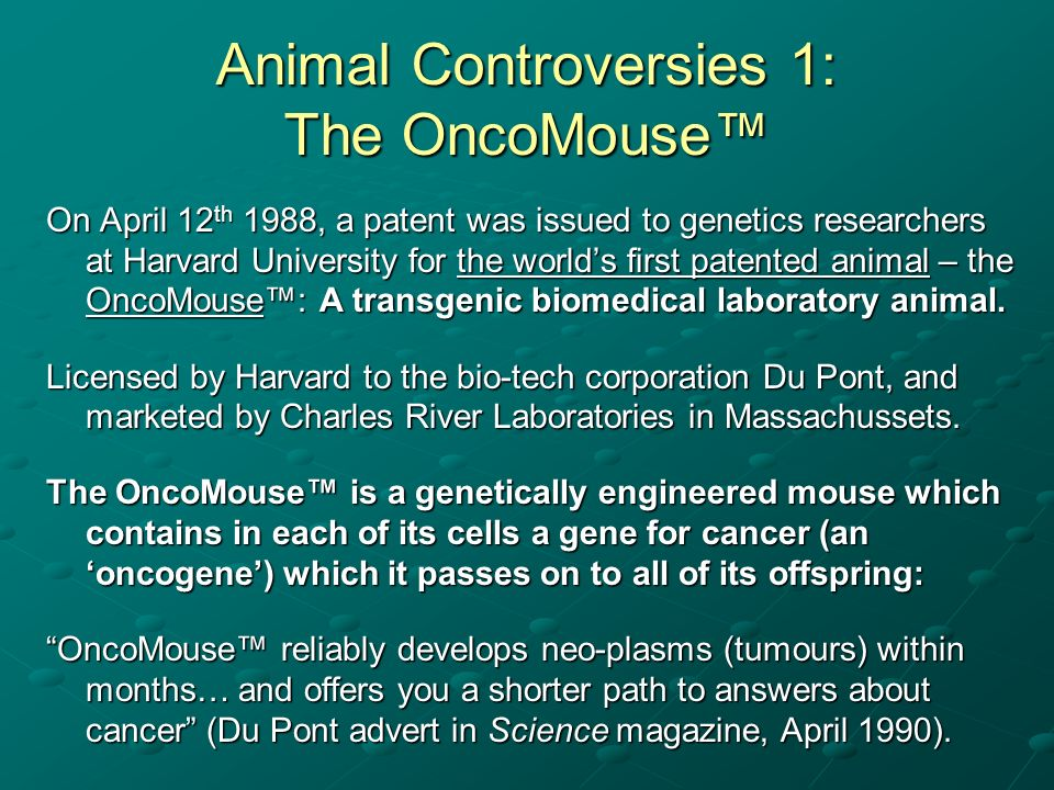 Animal Controversies 1: The OncoMouse™