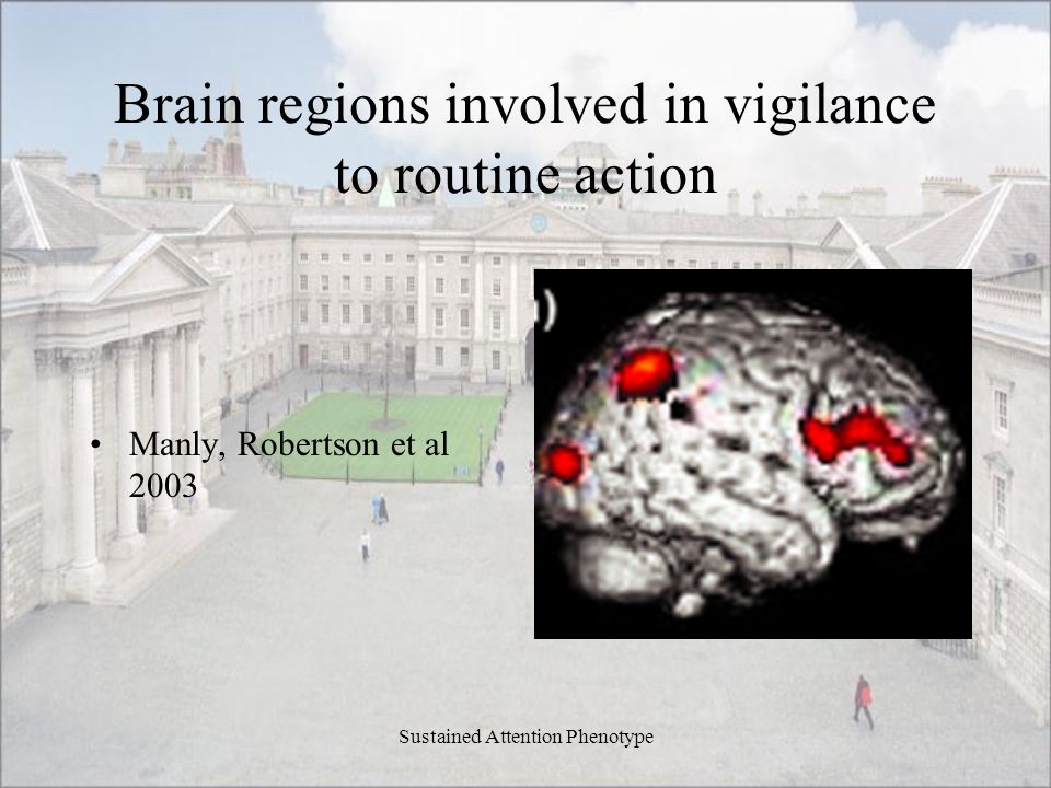 Brain regions involved in vigilance to routine action