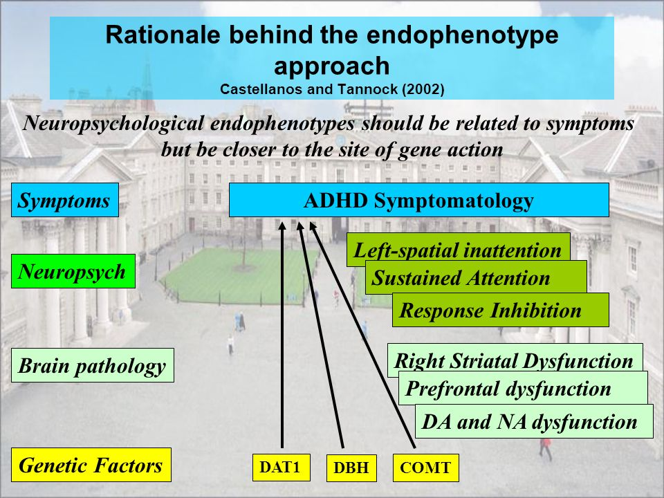 Rationale behind the endophenotype approach Castellanos and Tannock (2002)