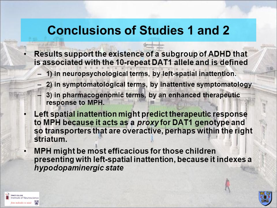 Conclusions of Studies 1 and 2