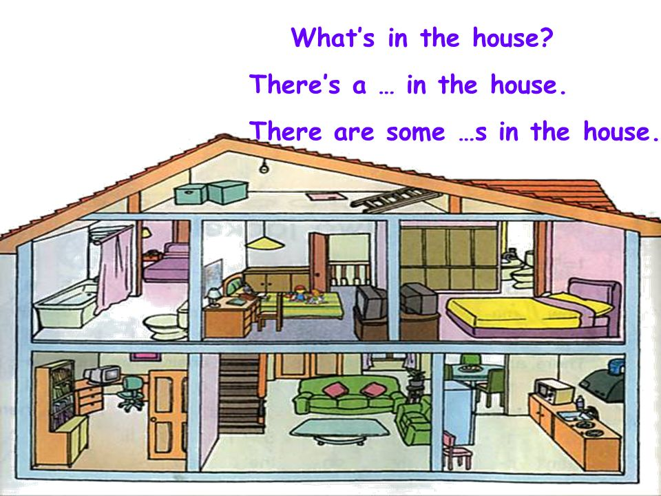 What's in the house There's a … in the house. There are some …s in the house.