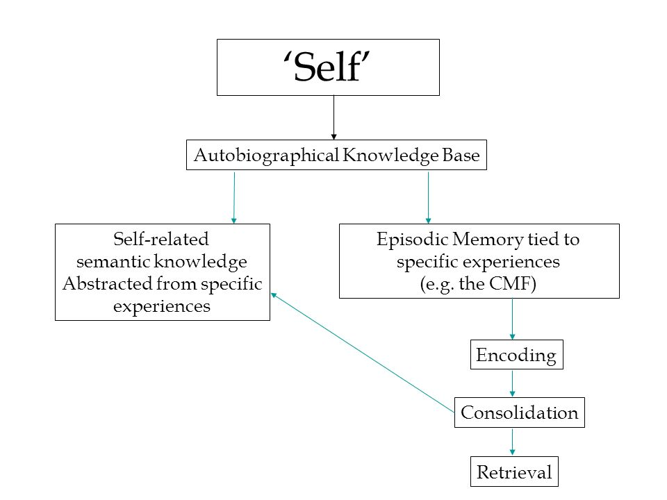 'Self' Autobiographical Knowledge Base Self-related semantic knowledge