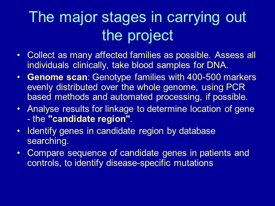 The major stages in carrying out the project