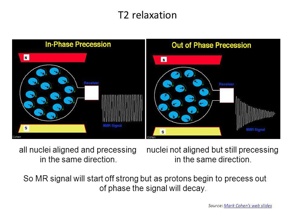 T2 relaxation all nuclei aligned and precessing in the same direction.