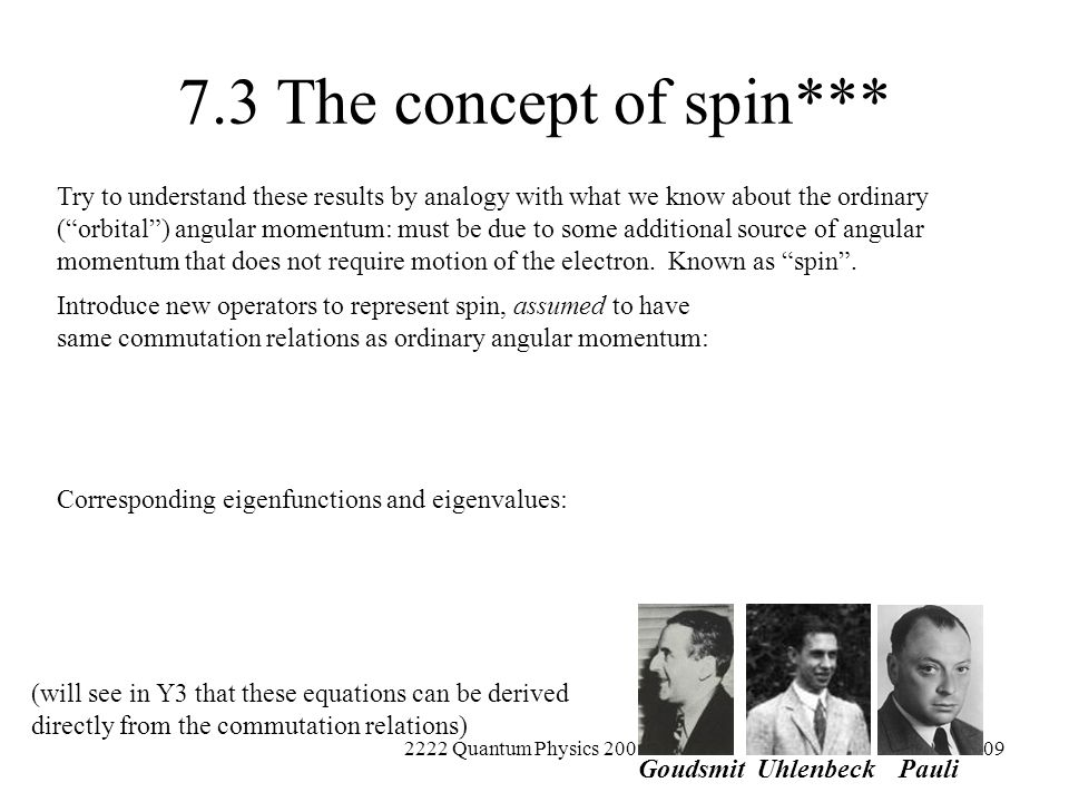 7.3 The concept of spin***