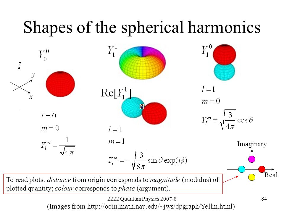 Shapes of the spherical harmonics