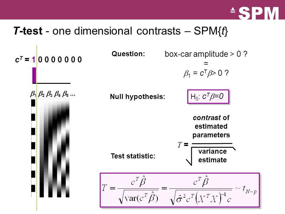 T-test - one dimensional contrasts – SPM{t}