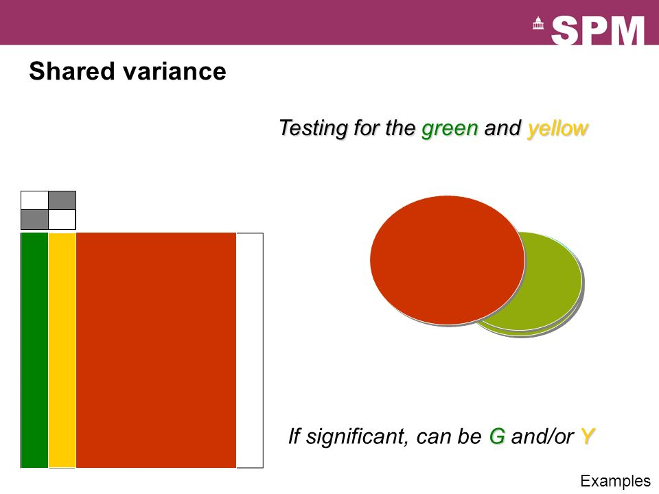 Shared variance Testing for the green and yellow