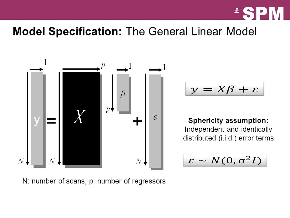 Model Specification: The General Linear Model