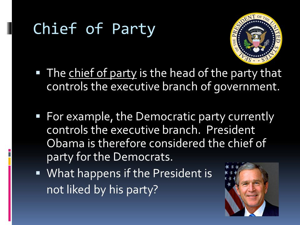 roles of the president. - ppt download