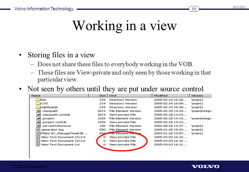 Working in a view Storing files in a view