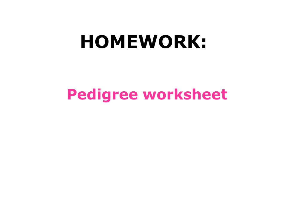 Assignment Pedigrees Ppt Download