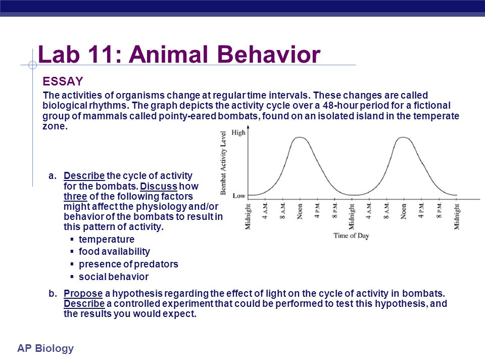 animal behavior essay questions What kinds of questions iv mechanistic:  animal behavior also gives some of the first warning signs of  animal behavior presentation copy essay.