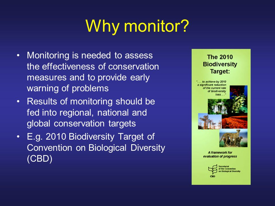 Why monitor Monitoring is needed to assess the effectiveness of conservation measures and to provide early warning of problems.