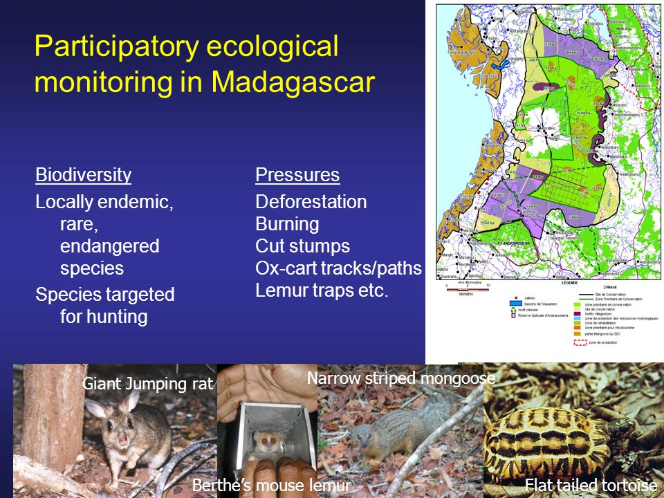 Participatory ecological monitoring in Madagascar