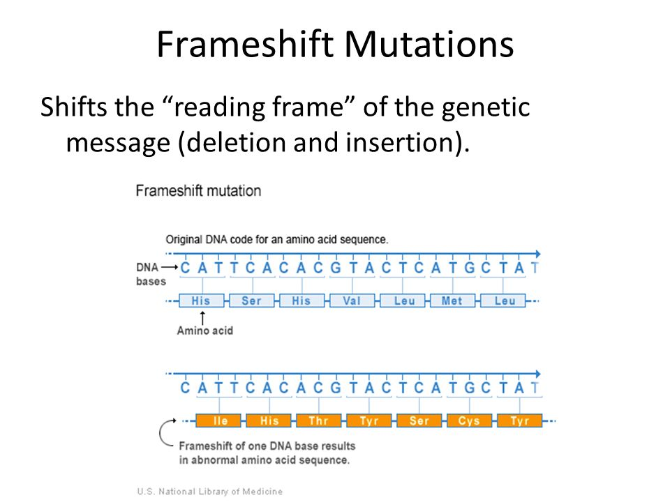 Frameshift Mutations Shifts the reading frame of the genetic message (deletion and insertion).