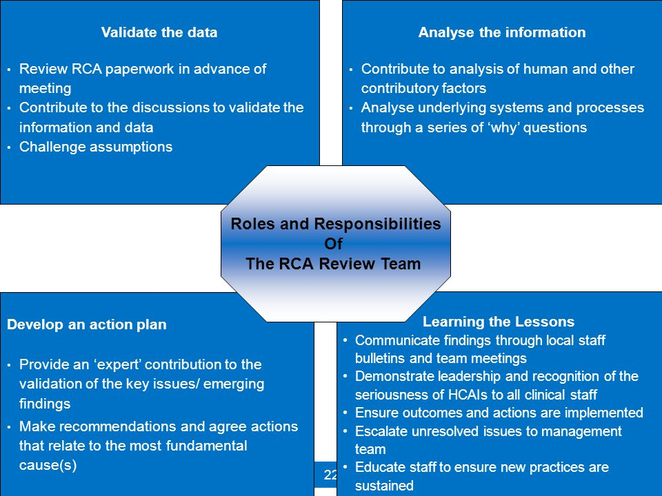 Analyse the information Roles and Responsibilities