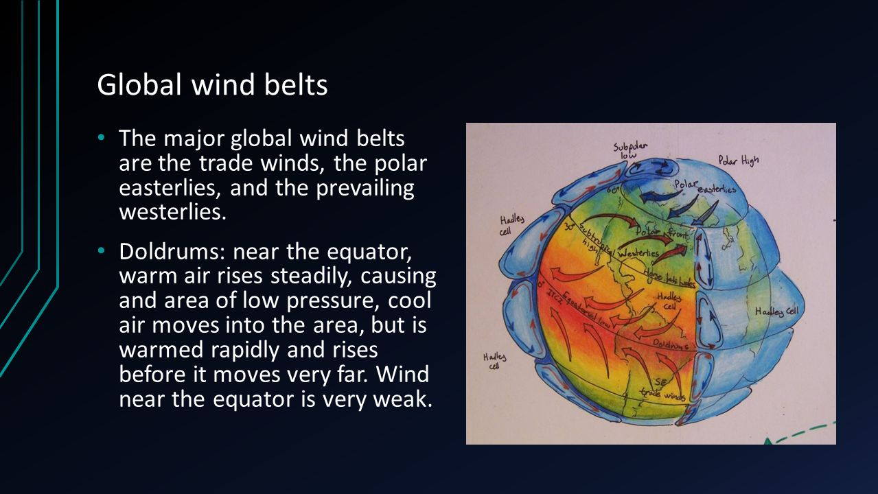 Global wind belts The major global wind belts are the trade winds, the polar easterlies, and the prevailing westerlies.