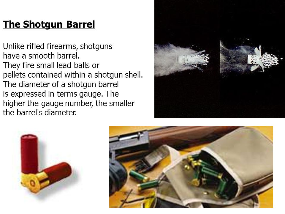 Forensic Ballistics Ppt Video Online Download