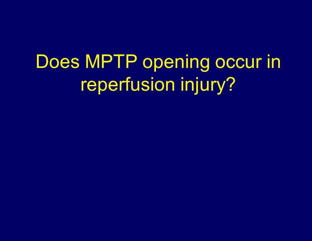Does MPTP opening occur in reperfusion injury