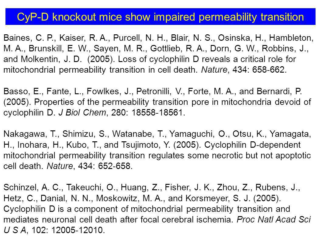 CyP-D knockout mice show impaired permeability transition