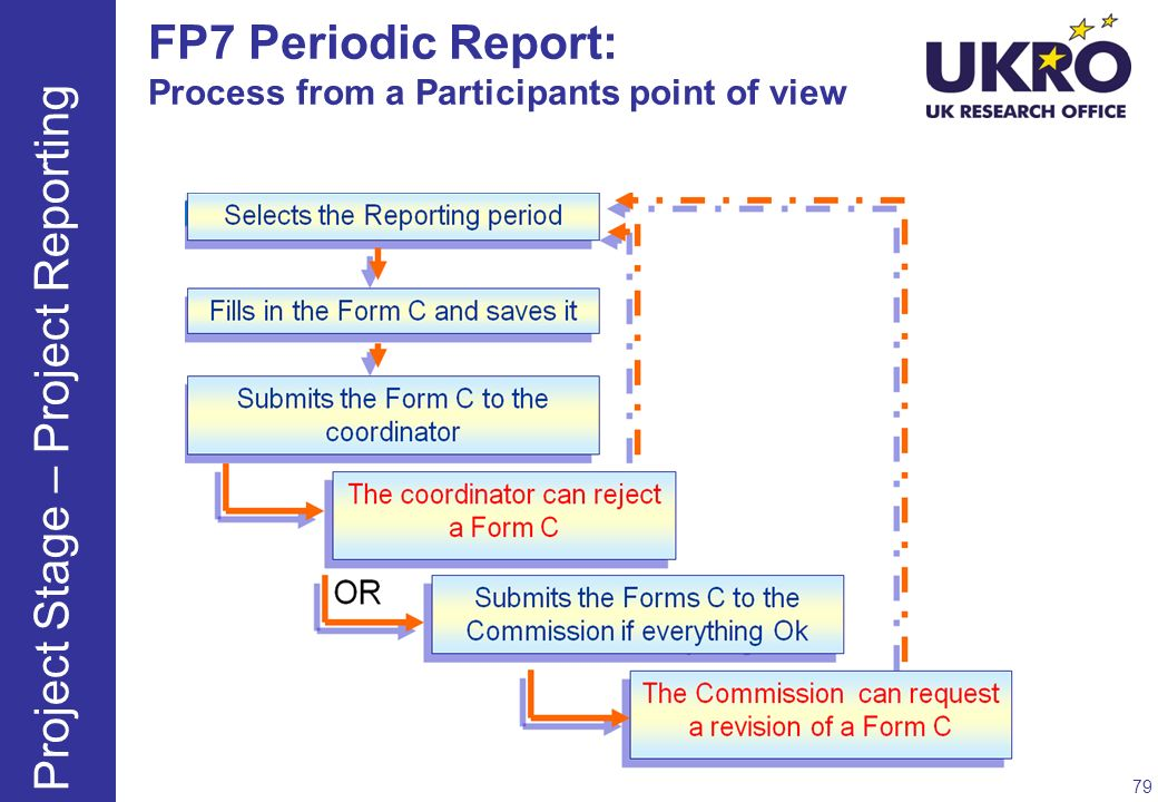 FP7 Periodic Report: Process from a Participants point of view