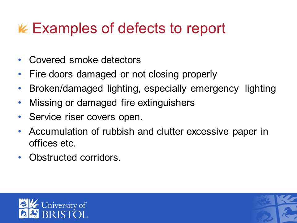 Examples of defects to report