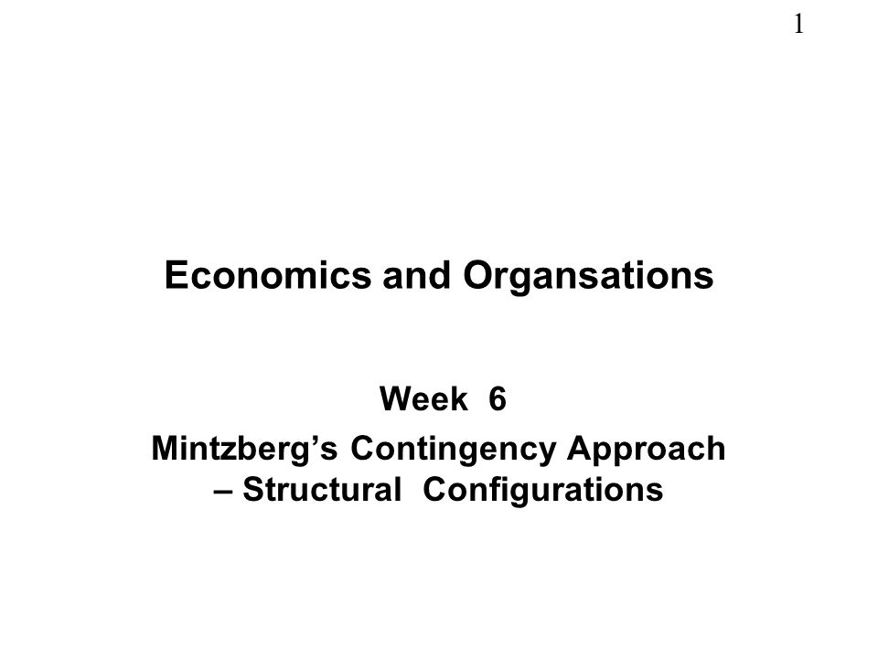 Economics and Organsations