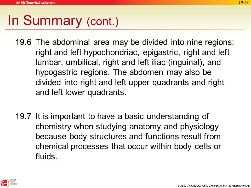 Organization of the Body - ppt download