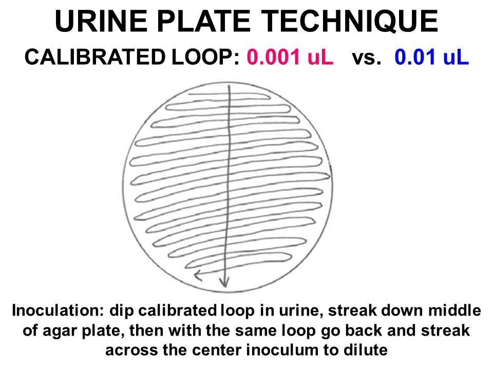 disadvantage of streak plate technique
